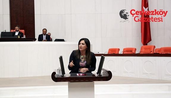 Yüceer, KOSGEB mağduriyetini Meclise taşıdı