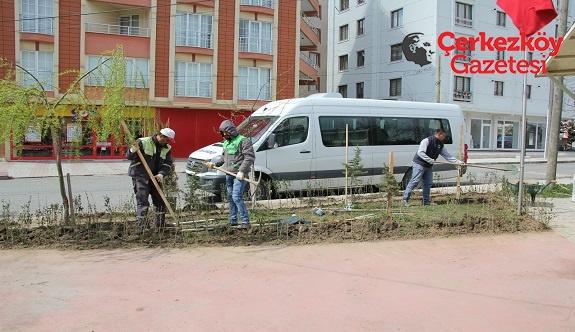 Park ve yeşil alan çalışmaları sürüyor