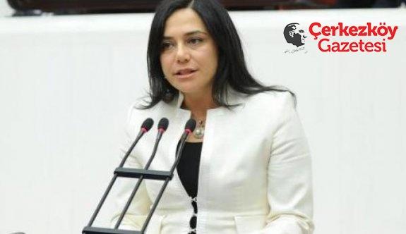 Yüceer, Çokal Barajı balık ölümlerini Meclise taşıdı