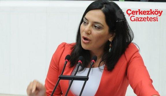Yüceer: Ülkemizde hak ihlalleri katlanarak artmaktadır