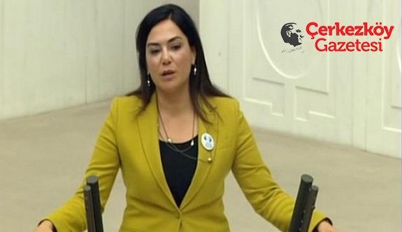 Yüceer, 'slikozis'i Meclis gündemine taşıdı
