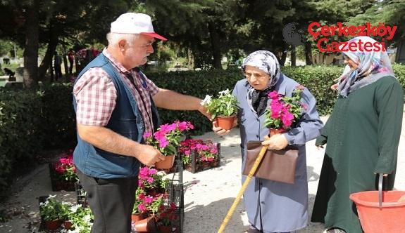 5 bin adet çiçek dağıtıldı