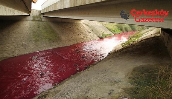 Ergene Nehri için araştırma önergesi! 