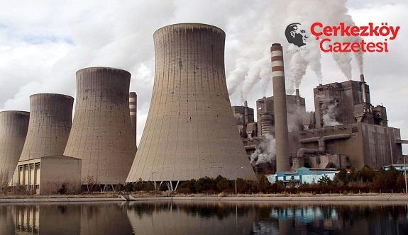 Termik santrallerin yüzde 42'si zarar ediyor 
