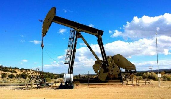 Tekirdağ'da petrol bulundu iddiası...