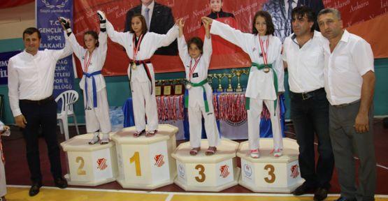 2. Uluslararası Taekwondo Şampiyonası düzenlendi