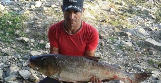 Meriç Nehri'nde 18 kiloluk sazan yakaladı