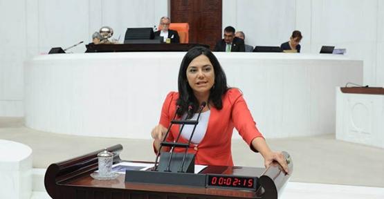 Nefret söylemi Meclis gündemine taşındı