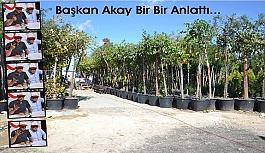 Başkan Akay, Öğe'ye bir bir anlattı