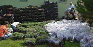 Mezarlıklar çiçeklerle donatıldı